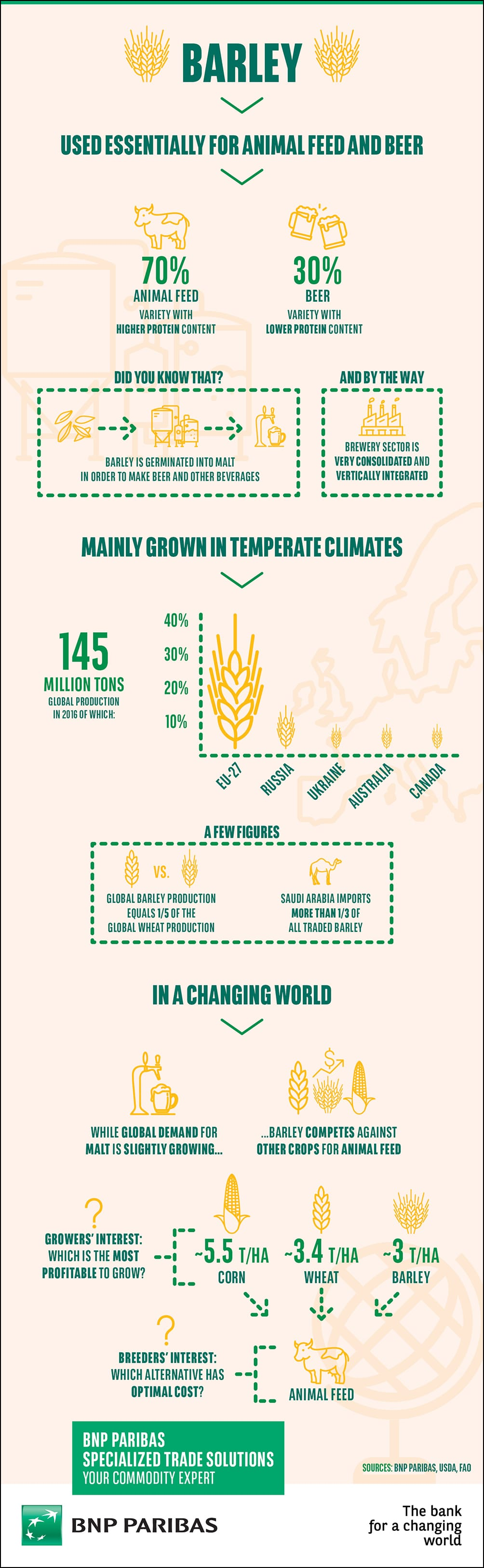 Barley is used for malt beer and animal feed, with complex trade patterns impacting production and demand.